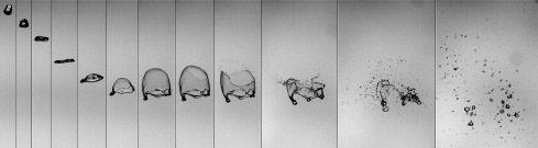 Sechzig Millisekunden aus dem Leben eines fünf Millimeter großen Regentropfens